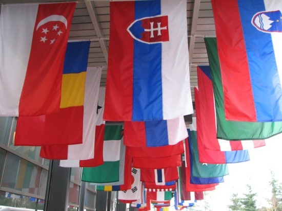 Flags at MSCC